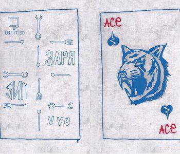 Тотальная инсталляция групировки ЗИП «Хрустальный тигр»